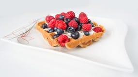 Fruit waffle Stock Images