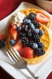 fruit waffles Zdjęcie Royalty Free