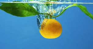 Fruit in water Royalty Free Stock Photo