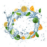 Fruit Water splash stock illustration