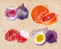 Fruit watercolor figs, grapefruit, lychee Stock Image