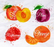 Fruit watercolor peach, raspberry, plum, orange. Fruit set drawn watercolor blots and stains with a spray peach, raspberry, plum, orange stock illustration