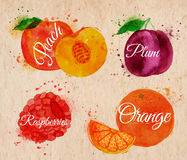 Fruit watercolor peach, raspberry, plum, orange in. Fruit set drawn watercolor blots and stains with a spray peach, raspberry, plum, orange in kraft stock illustration