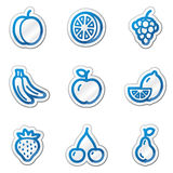 Fruit web icons, blue contour sticker series Royalty Free Stock Images