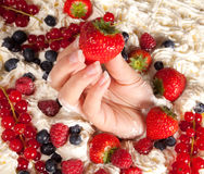 Fruit and whipped cream Stock Images