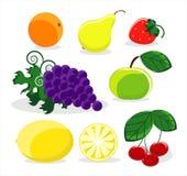 Fruit on white background. Fruit colored on white background Royalty Free Stock Photo