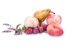 Fruit on white Royalty Free Stock Photography
