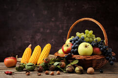 Fruit in wicker baskets and corn Stock Image
