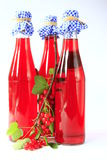 Fruit wine made from red currants. Three bottles of fruit wine made from red currants with a twig of a currant bush with ripe fruits Royalty Free Stock Images