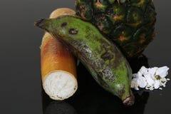 Fruit worship the gods Royalty Free Stock Image