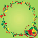 Fruit wreath Stock Image