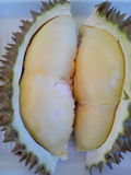 The fruit. Yellow durian aromatic delicious Royalty Free Stock Images