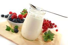 Fruit yoghurt Royalty Free Stock Image