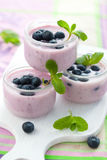 Fruit yogurt Stock Photography