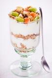 Fruit Yogurt Stock Images