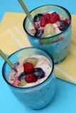 Fruit yogurt Royalty Free Stock Images