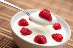 Fruit Yogurt. A bowl of yogurt with fresh raspberries on top with a spoonful of it Stock Image