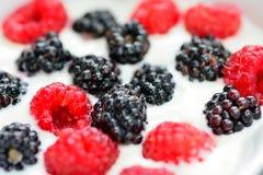 Fruit yogurt Stock Photo