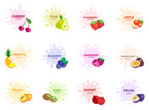Fruit with yogurt drop vector set  Stock Images