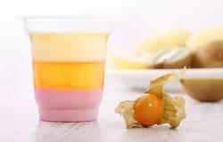 Fruit yogurt and physalis Royalty Free Stock Photos