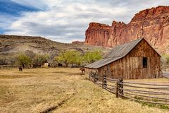 Fruita is currently the heart and administrative center of Capitol Reef National Park, Utah. Fruita was established in 1880 by a group of Mormons led by Nels Stock Photography