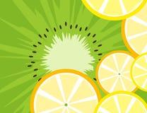 Fruitachtergrond stock illustratie