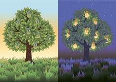 Fruitboom met gloeilampen Stock Foto