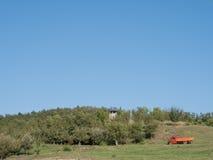 Fruitboomgaard onder de hemel royalty-vrije stock fotografie