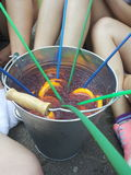 Fruitbowl Zdjęcie Stock