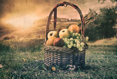 Fruitbox στοκ εικόνα