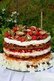 fruitcake στρώμα Στοκ φωτογραφία με δικαίωμα ελεύθερης χρήσης
