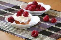 Fruitcake apetitoso com framboesa Fotografia de Stock Royalty Free