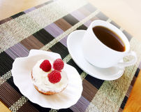 Fruitcake appetitoso con crema ed il lampone immagini stock