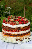 Fruitcake Layer. A layered fruit cake for a wedding Royalty Free Stock Photo