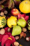 Fruitdecoratie Stock Foto