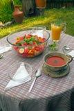 Fruitdessert en sappen in de tuin wordt gegeven die royalty-vrije stock afbeeldingen