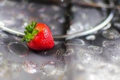 Fruitella stock photos