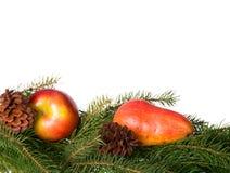fruites сезонные Стоковые Изображения RF