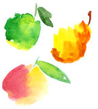 Fruites de Watercolour Photographie stock libre de droits