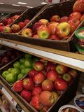 Fruitful. The apples we love to eat royalty free stock photography