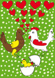 Fruitful love. Love hen and a rooster with chickens in the field chamomile Stock Photo