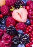Fruitful mix Royalty Free Stock Photos