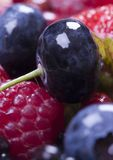 Fruitful mix Stock Photography
