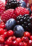 Fruitful mix Stock Photo