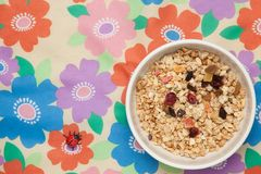 Fruitgranola Stock Foto