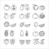 Fruithand getrokken die pictogram in lijnstijl wordt geplaatst Stock Foto's
