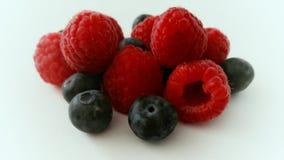 Fruitig of bosbessen? Stock Afbeeldingen