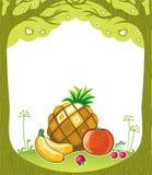 Fruitige achtergrond Stock Afbeeldingen