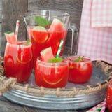Fruitige cocktail met watermeloen Royalty-vrije Stock Afbeeldingen