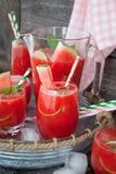 Fruitige cocktail met watermeloen Stock Foto